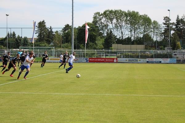 30. Spieltag 2018/ 2019 - Luckenwalde gegen Hohenstein Ernstthal - 6