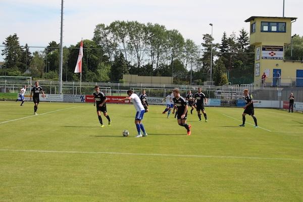 30. Spieltag 2018/ 2019 - Luckenwalde gegen Hohenstein Ernstthal - 9