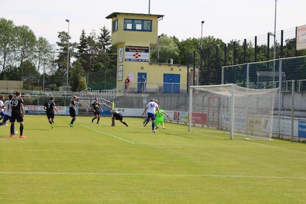 30. Spieltag 2018/ 2019 - Luckenwalde gegen Hohenstein Ernstthal - 10