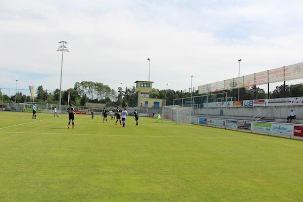 30. Spieltag 2018/ 2019 - Luckenwalde gegen Hohenstein Ernstthal - 11