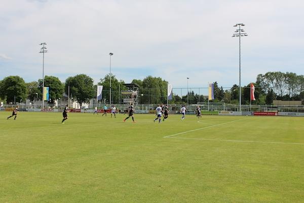 30. Spieltag 2018/ 2019 - Luckenwalde gegen Hohenstein Ernstthal - 15