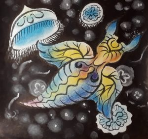 The drawing of Naked Sea Butterfly and Moon Jellyfish
