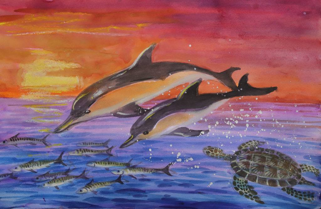 A Seascape with Common Dolphins, Green Sea Turtle and Mackerel. Watercolor and Pastel on Paper