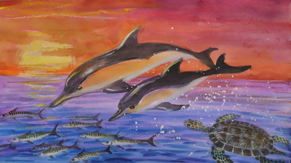 The seascape featuring dolphins, a sea turtle and a school of mackerel