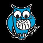 Logo-Neteland-transparant