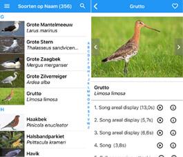 BirdSounds_Europe