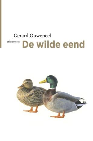 De_wilde_eend
