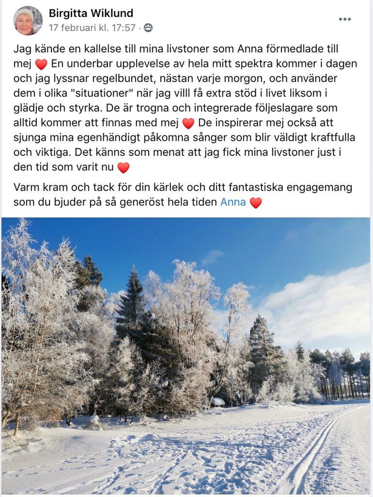 Birgitta om sina Livstoner