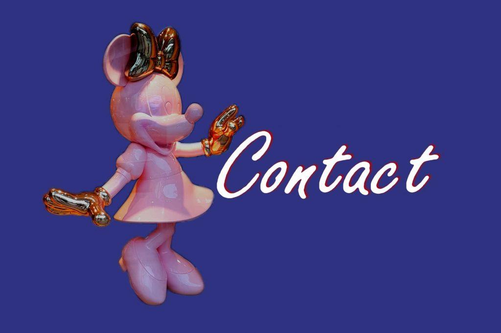Contact waasland.net