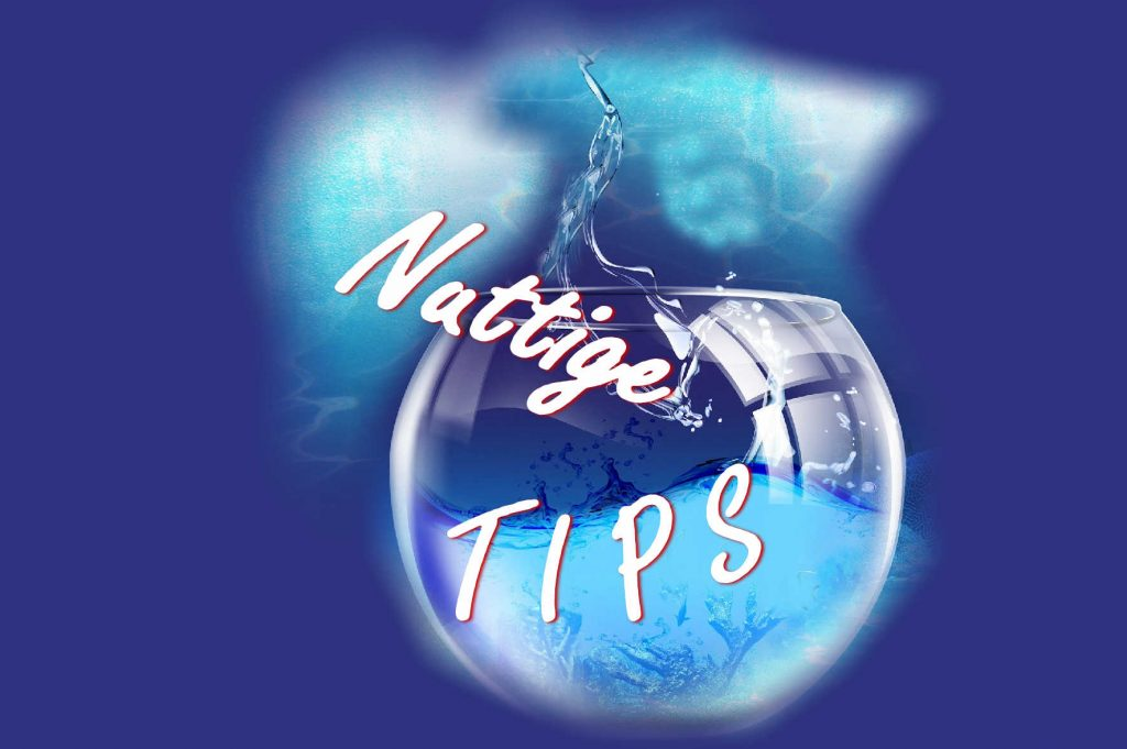 Nuttige tips op waasland.net