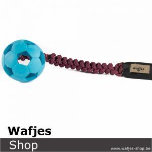 Wafjes-Bungee Soccer