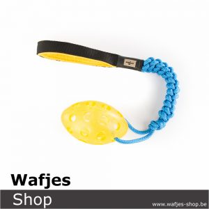 Wafjes-bungee-football