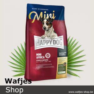 HappyDog - Supreme-MiniAfrica