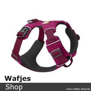 Front-Range-Harness-Hibiscus-Pink