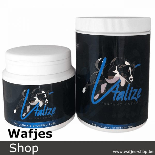 Vtalize Instant Energy for dogs