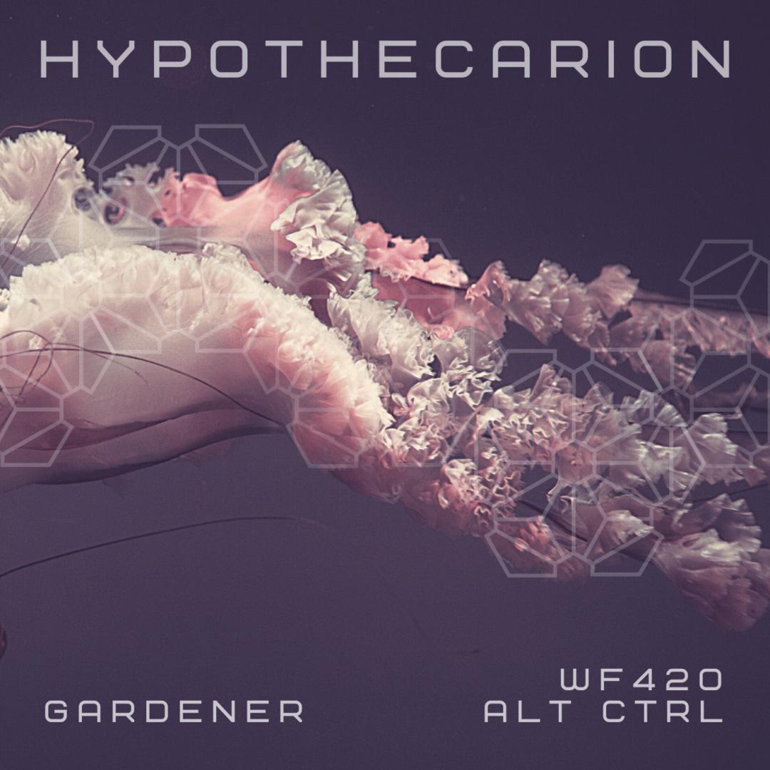 Hypothecarion – Introducing Gardener On ALT CTRL
