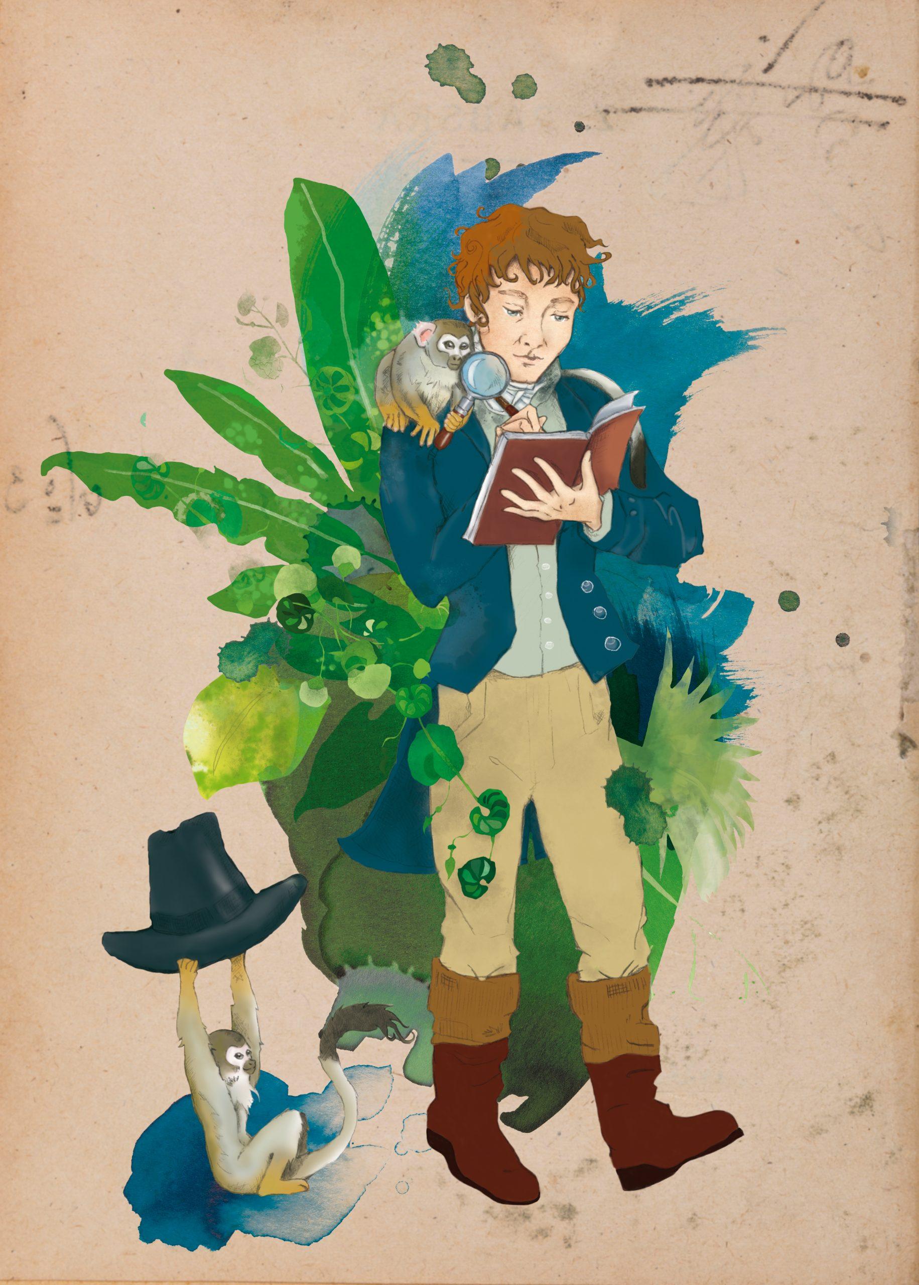 franziska_schneider_illustration_alexander_von_humboldt_affe