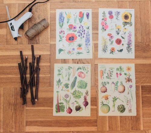 På vilden finns allt du behöver för att göra egna DIY skolplanscher. Bilder, pinnar, limpistol och snöre.