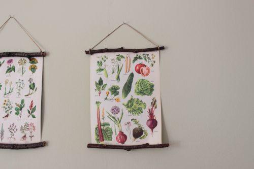 Närbild på en av skolplanscherna med grönsaker som gurka, rödbeta och tomat.