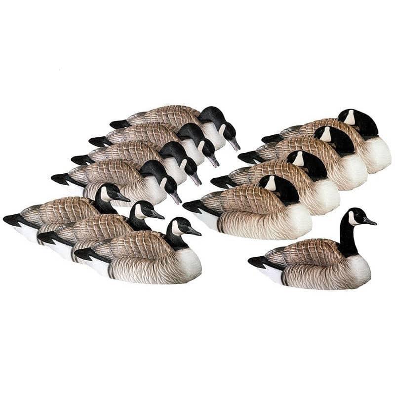 Canada Honker skaller (12 pack)
