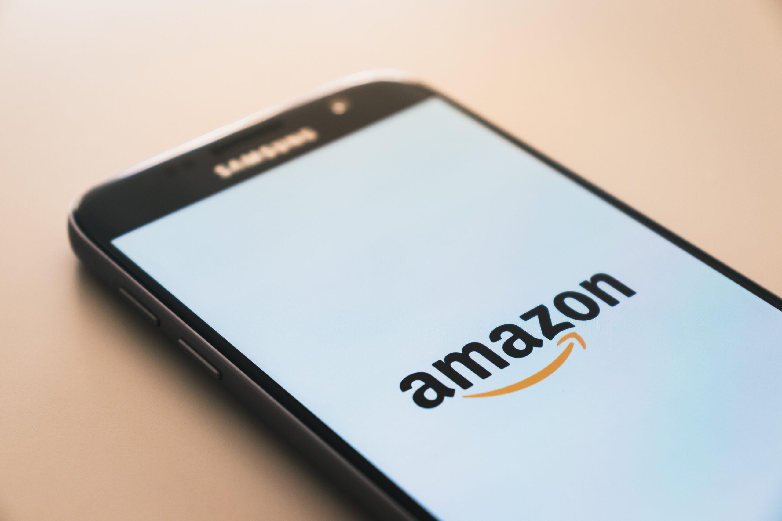 Tidshorisont och incitament, en lärdom från Amazons framgång