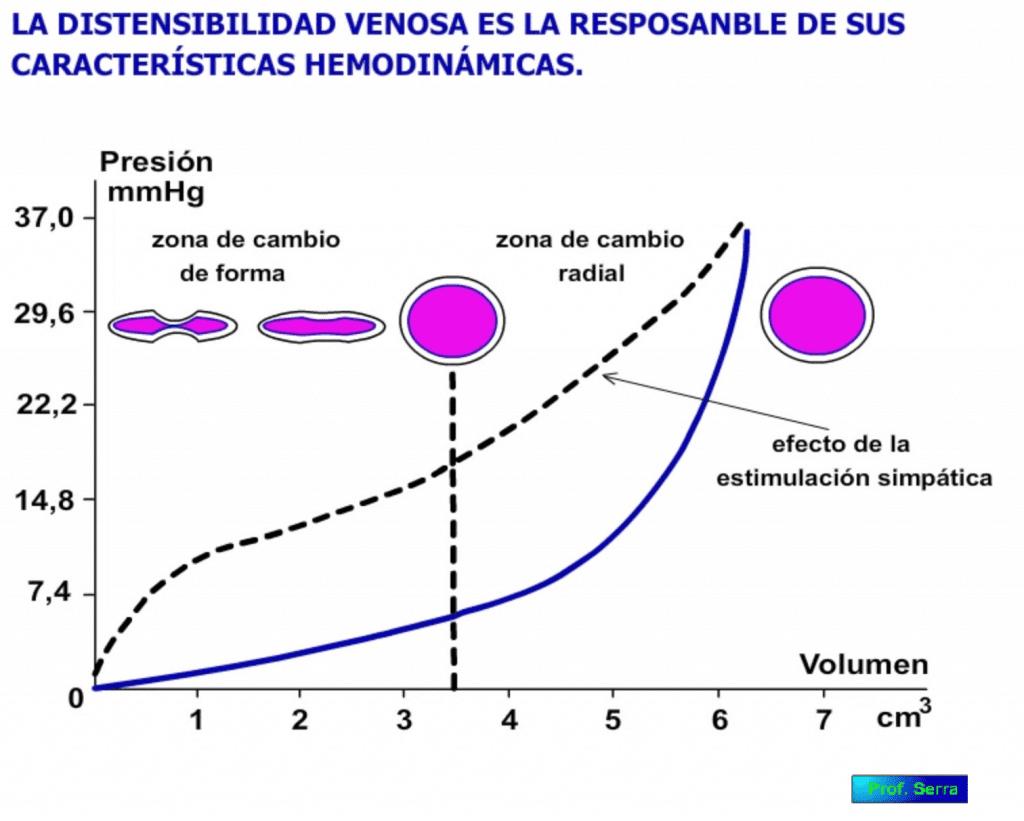 Distensibilidad venosa