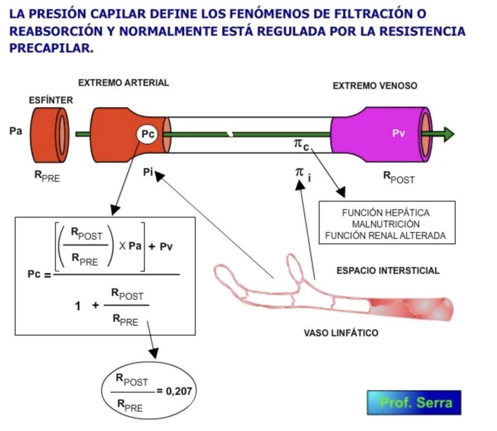 Factores que modifican la filtración y reabsorción