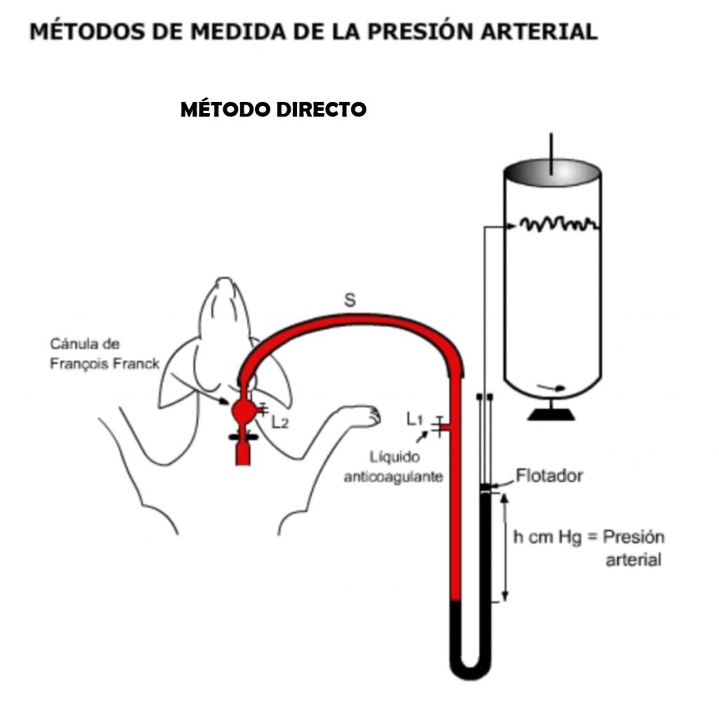 Medida directa de la presión arterial