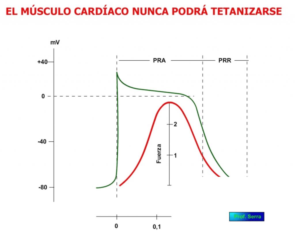 tetanización cardíaca