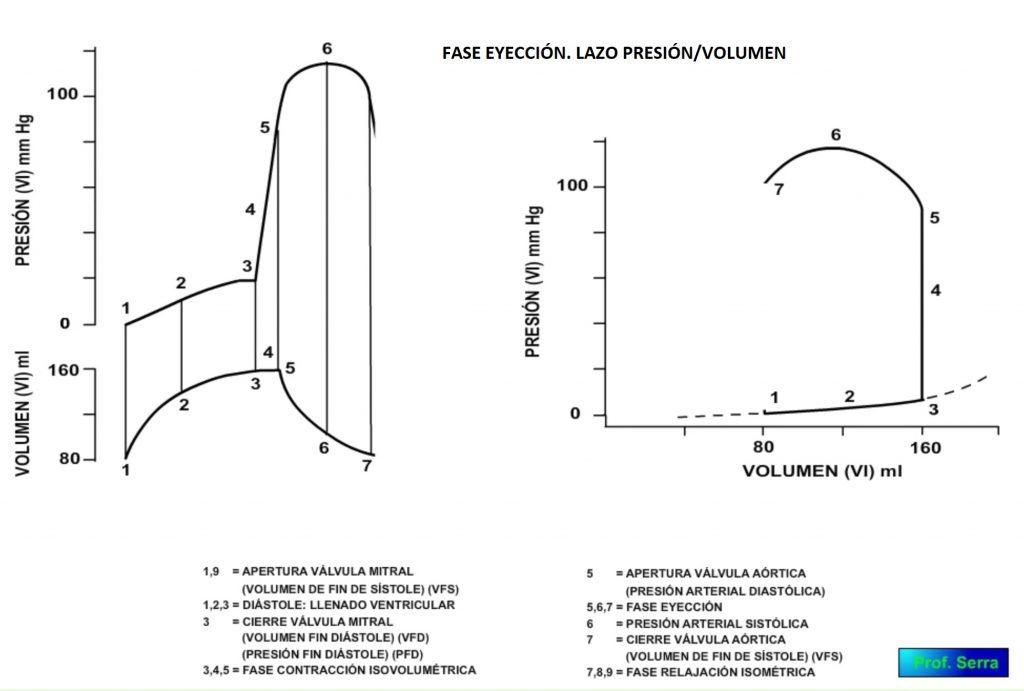 fase eyección, lazo presión volumen
