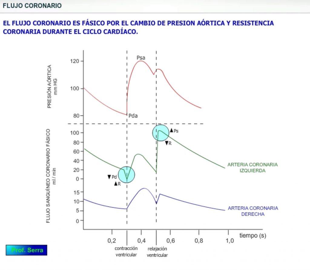 hemodinámica coronaria
