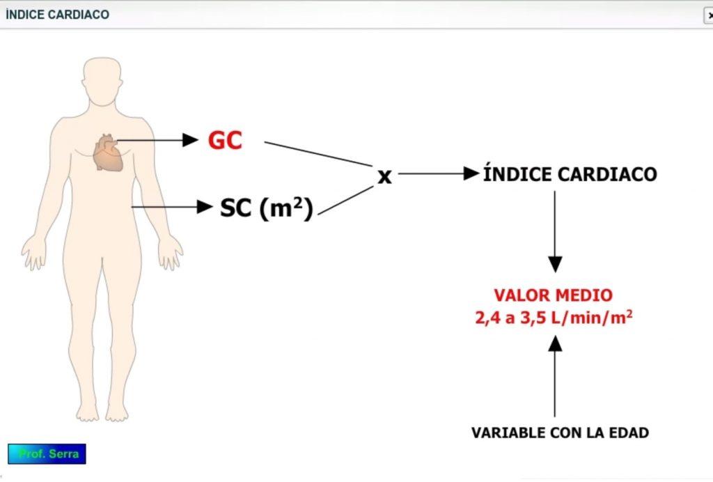 índice cardíaco