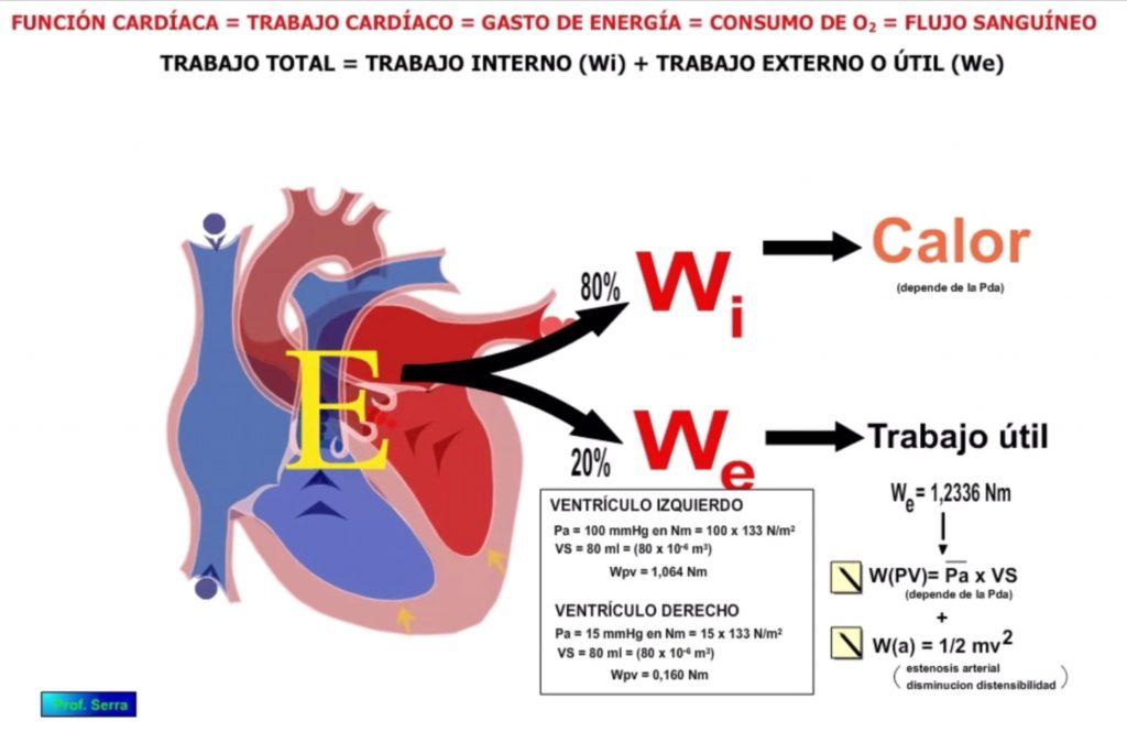 valores trabajo cardíaco presión volumen