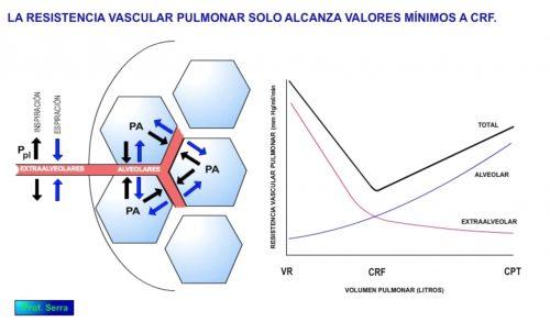 resistencia pulmonar y volumen