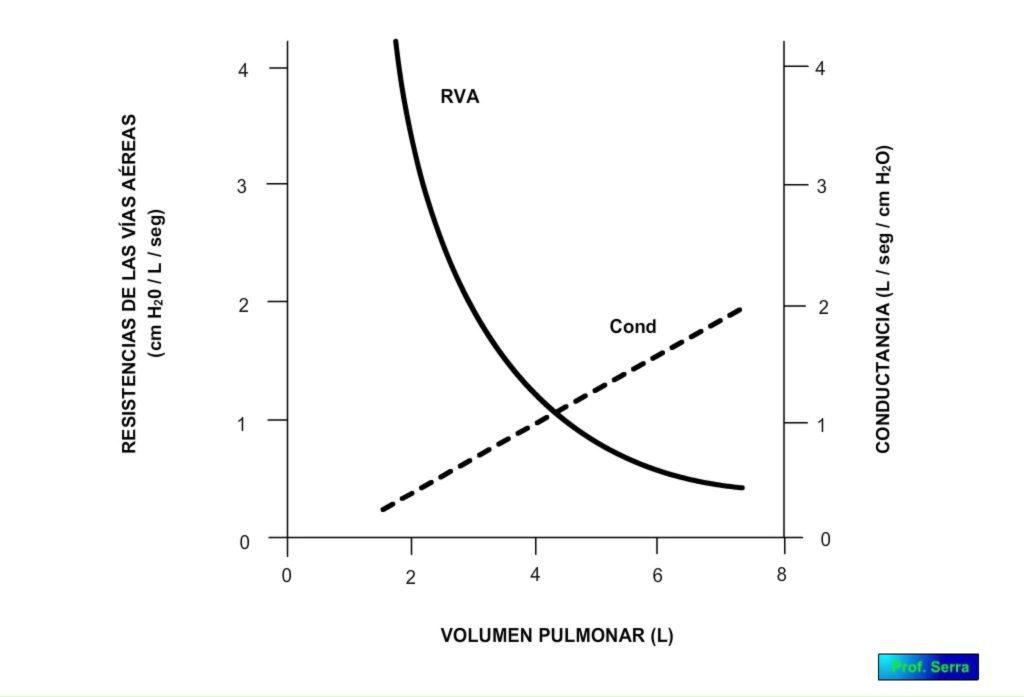 resistencia dinámica por el volumen pulmonar