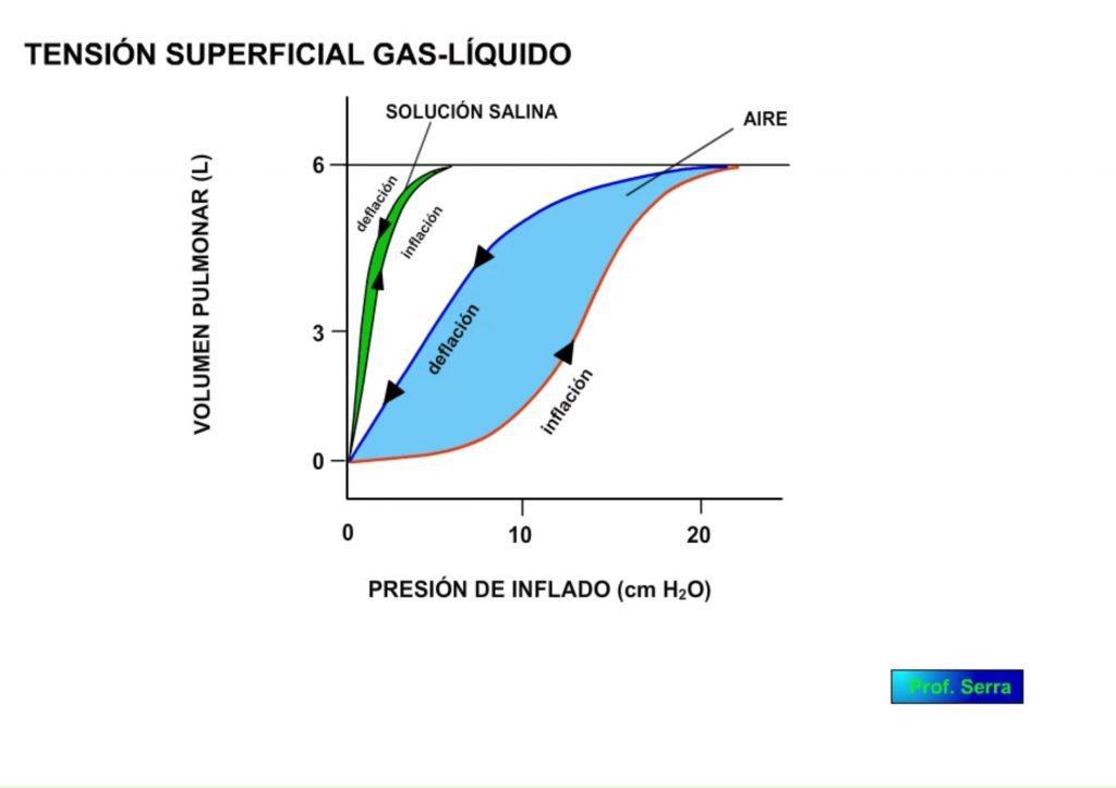 tensión superficial. Curva VP/presión de inflado 2