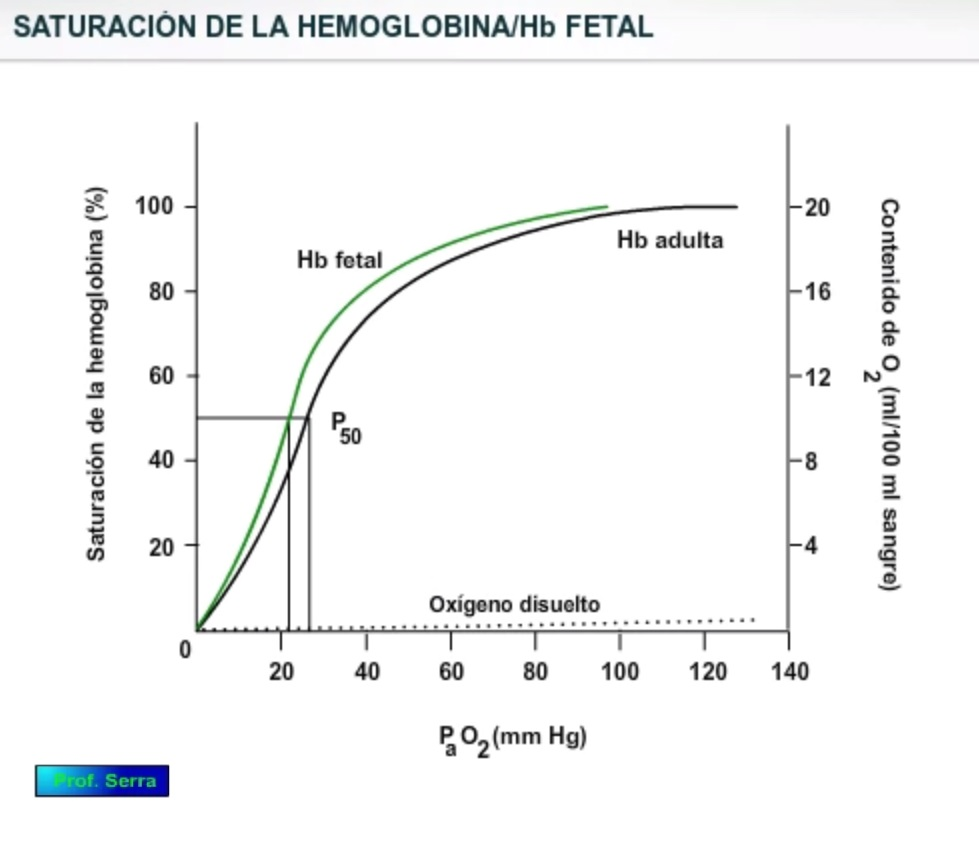 Efecto de la hemoglobina fetal