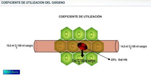 coeficiente de utilización del oxígeno
