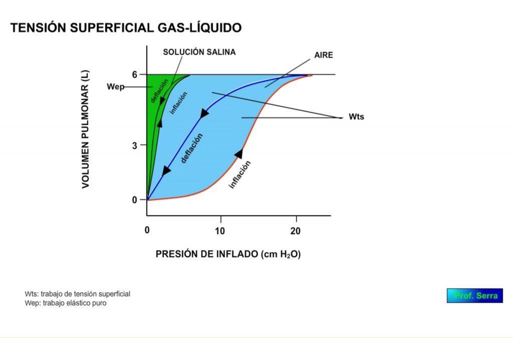 Tensión superficial. Curva VP/presión de inflado. Trabajo de tensión superficial.