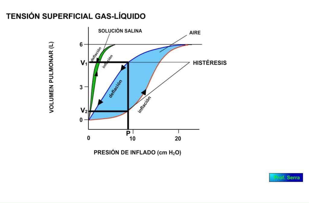 Tensión superficial. Curva VP/presión de inflado. Histéresis.