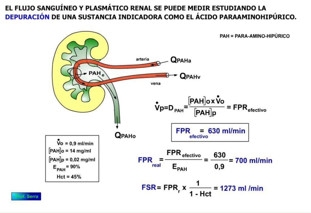 Medida flujo renal
