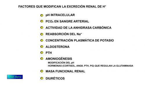 Factores que modifican la excreción renal de hidrogeniones