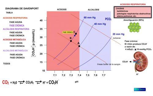 Acidosis respiratoria. Fase crónica.