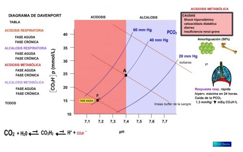 Acidosis metabólica. Fase aguda.