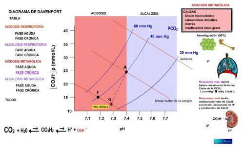 Acidosis metabólica. Fase crónica.