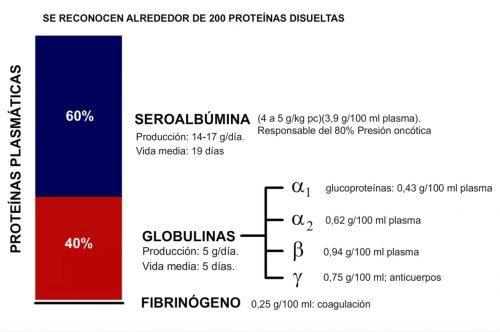 Proteínas plasmáticas.