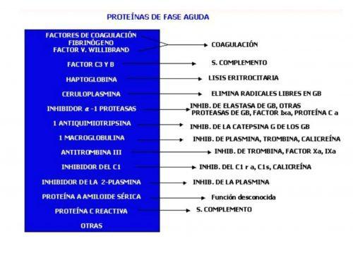 Proteínas de fase aguda.