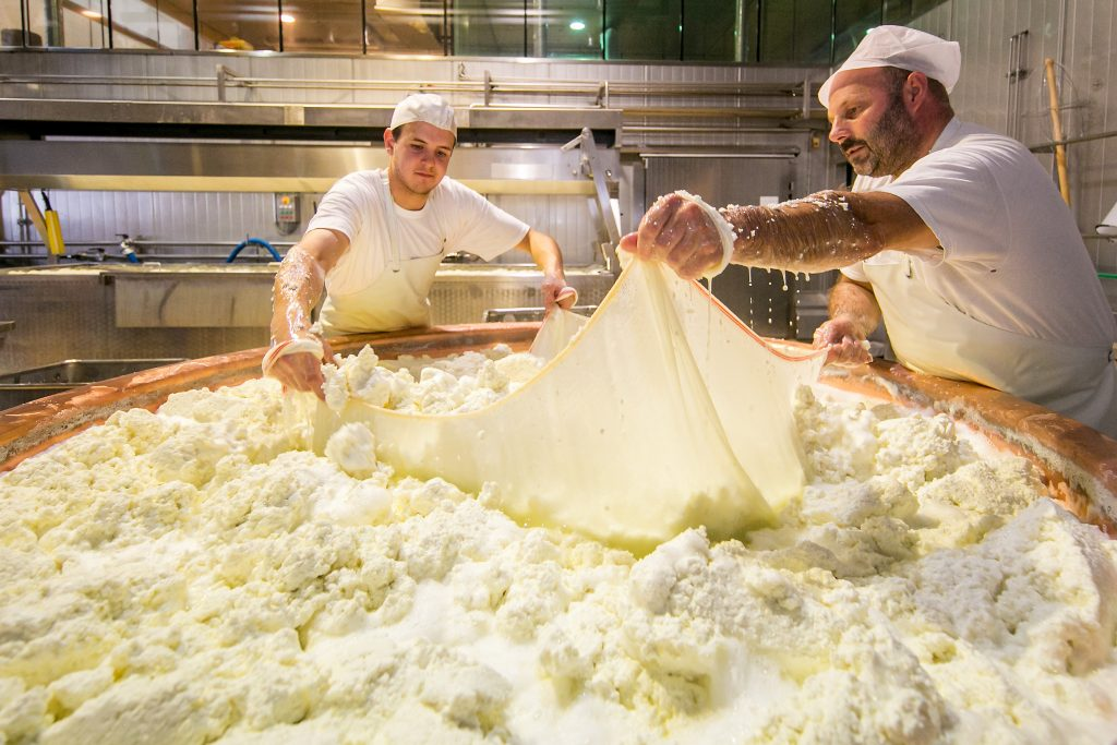 Käser bei der Produktion von Graukäse in der Erlebnissennerei Zillertal
