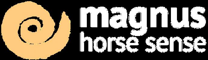 magnus-logo-header Kopie