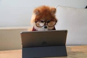 Lees meer over het artikel 60.000 extra laptops en tablets voor onderwijs op afstand